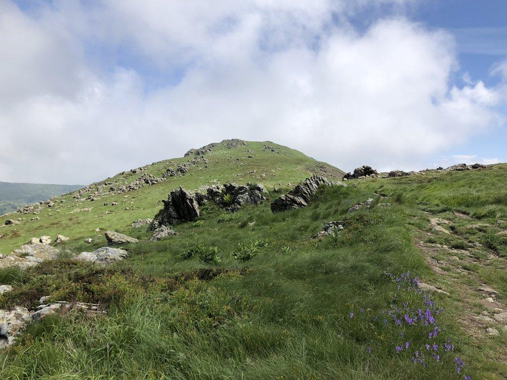Photo №2 of Monte Reixa