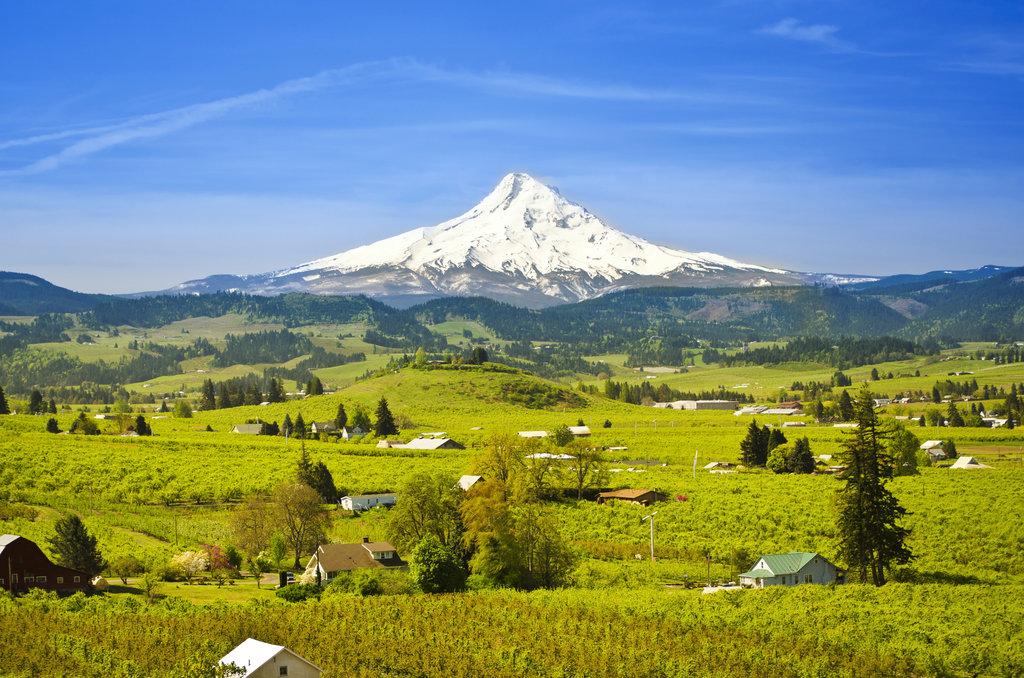 Oregon 9000-foot Peaks